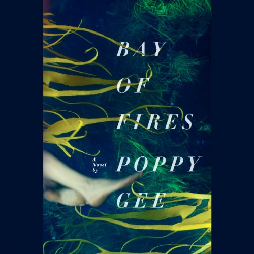 Bay of Fires audiobook cover art