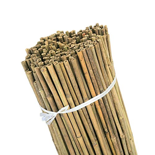2ft-3ft-4ft-5ft Bamboo Canes/Stake/Pole Garden Plant Flower Support Sticks Outdoor/Indoor Plants Support Natural Strong (10, 6ft - 180cm (14-16mm))
