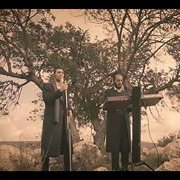 Yihey Ravu (feat. Yanki Cohen)