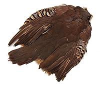 ロックパートリッチ 1羽 [042-Bs-N]ボディスキン フライマテリアル 羽根 羽毛 材料 釣り 毛針 毛鉤 タイイング パーツ