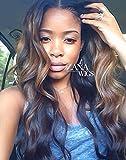 ZANA Brazilian Virgin Hair Lace Front Wigs Body Wave Glueless Human Hair Wigs for Black Women Ombre 1B/33 Highlight 30 Color