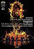 Richard Wagner: Siegfried (staged by La Fura dels Baus) - Zubin Mehta [Reino Unido] [DVD]
