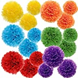 Paper Pom Poms Color Tissue Flowers Birthday Celebration Wedding Party Halloween Christmas Outdoor...