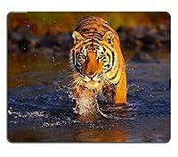 Tigerマウスパッド001 260*210*3 mm
