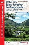 Sentier vers Saint-Jacques-de-Compostelle via Arles (Toulouse, Jaca, Lourdes): Plus de 20 jours de randonnée (TopoGuides GR)