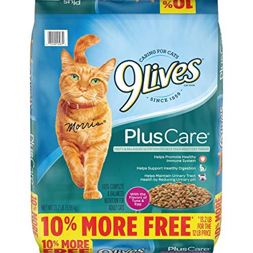 9Lives Plus Care Dry Cat Food