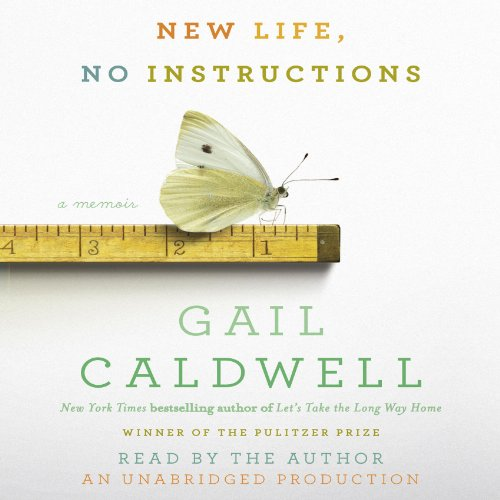 New Life, No Instructions audiobook cover art