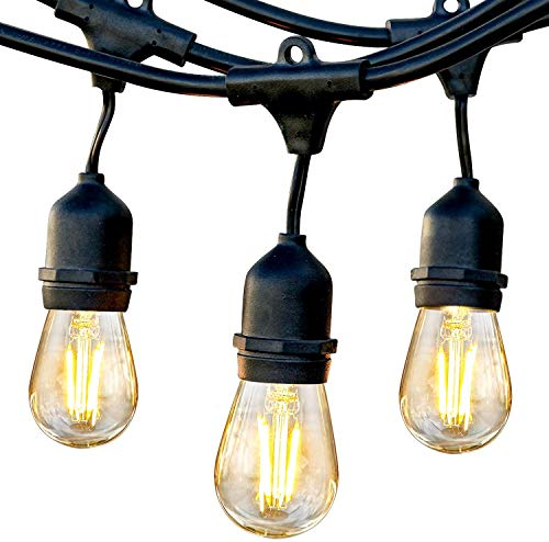 Brightech Ambience Pro - Waterproof LED Outdoor String Lights - Hanging, Dimmable 2W Vintage Edison Bulbs - 48 Ft Commercial Grade Patio Lights Create...