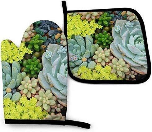 Sukkulente Blumenerde Grillhandschuhe,Kaminhandschuhe,Geeignet Für Kochen,Kochhandschuhe,Topfhandschuhe Topflappen,Backofenhandschuhe