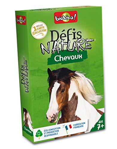 quiz cheval