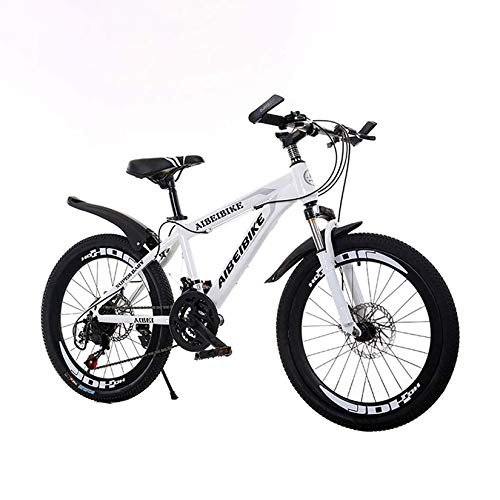 LEL Mountain Bike 21 Speed Shock Absorption Dual Ddisc Brakes Student Outdoors Bicycle, 20 Inch