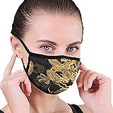 ZQLXD Máscara unisex para cubrir la boca, pasamontañas y antiviento, lavable, para interiores, exteriores,