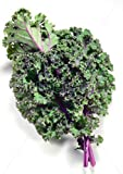 Red Russian Kale...image