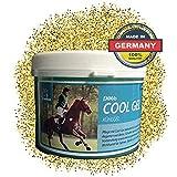 EMMA ♥ Gel Naturale del Cavallo a Base di Arnica Cura e unguento per Le Gambe, balsamo p...