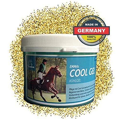 EMMA® Pferdebalsam fürs Pferd I Arnika Pferde Salbe I Kühlgel I Pferdesalbe extra stark kühlend I Pferde Sportsalbe I Muskelkater 500ml