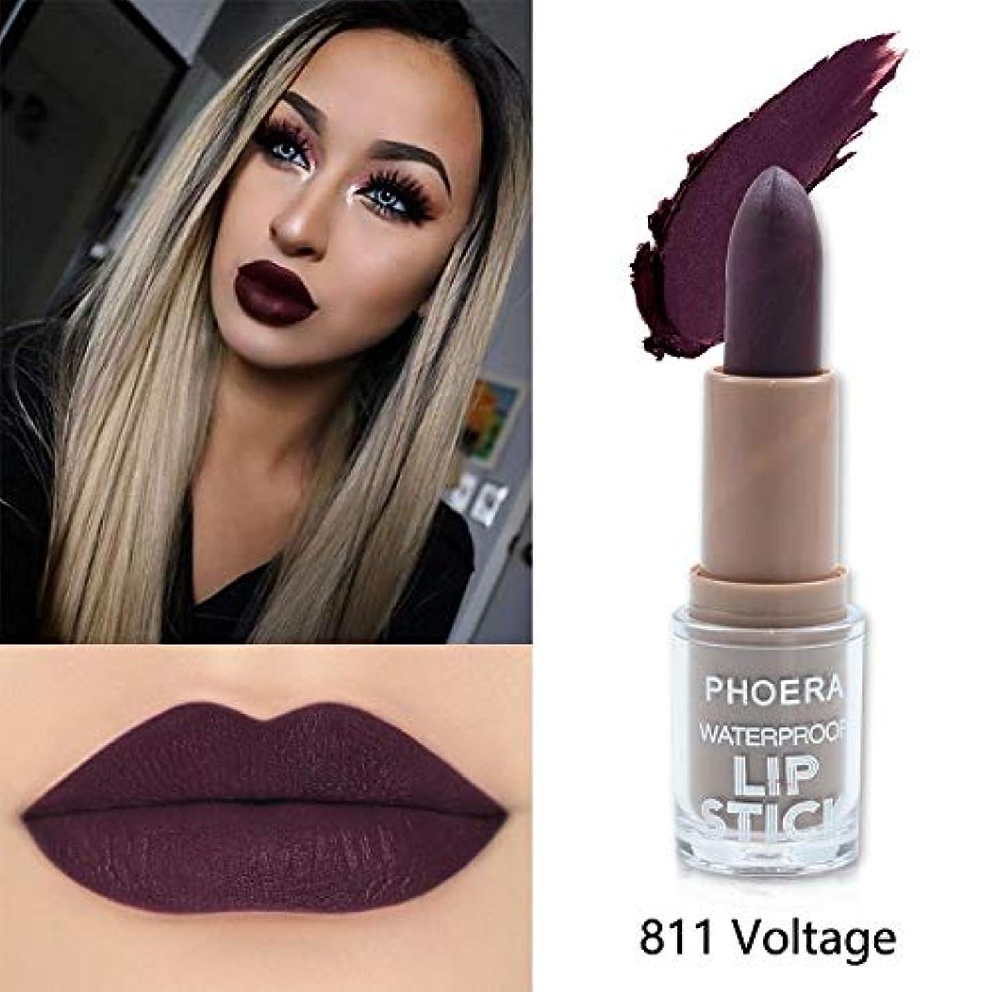 ジレンマオーガニック引き算Beauty Matte Moisturizing Lipstick Makeup Lipsticks Lip Stick Waterproof Lipgloss Mate Lipsticks Cosmetic