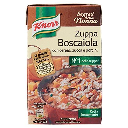 Knorr – Zupa Boscaiola, con cereales, calabaza y cerdos – 500 ml