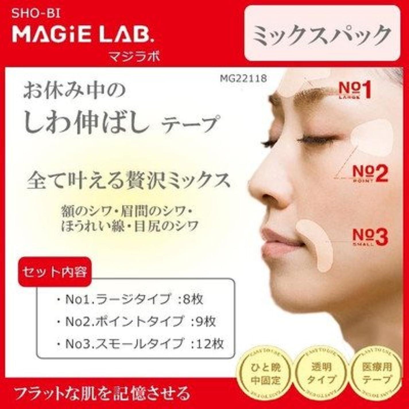 アイロニー短くする化学MAGiE LAB.(マジラボ) 全て叶える贅沢ミックス お休み中のしわ伸ばしテープ ミックスパック MG22118