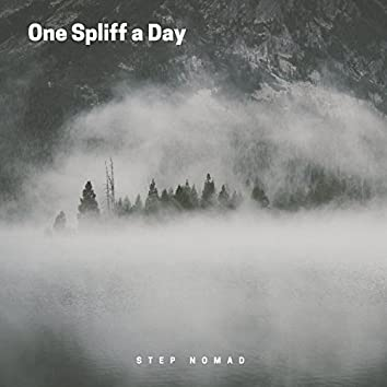 One Spliff a Day