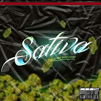 Sativa (feat. Ghan Neela, Alx One, Cali Budz & Faria Last XX)