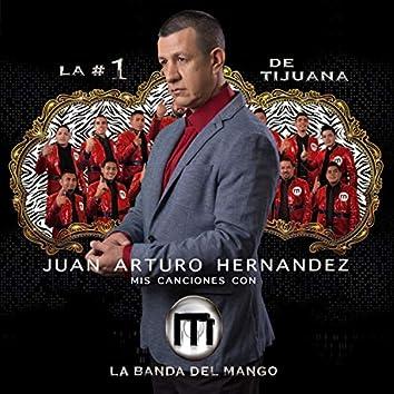 Juan Arturo Hernandez  Vol. 1