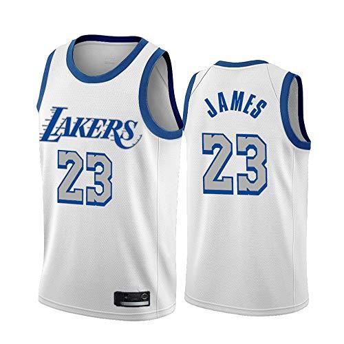 Baloncesto Jersey NBA Los Angeles Lakers # 23 Lebron James Retro Bordado Malla Baloncesto Ropa de Entrenamiento, Unisex Sin Mangas Tshirt Chaleco,Multi Colored,M