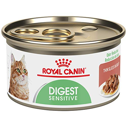 Royal Canin Feline Care Nutrition Digest Sensitive Thin Slices In Gravy Canned Cat Food, 3 ounce Can (Pack of 24)