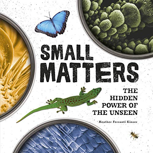 Small Matters: The Hidden Power of the Unseen