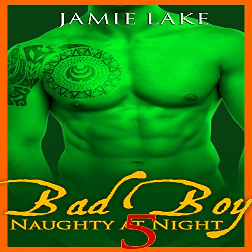 Bad Boy: Naughty at Night, Book 5 Titelbild
