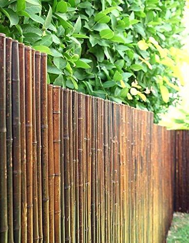 DE-COmmerce Robuster Bambus Holz Sicht Schutz Zaun ATY NIGRA hochwertiger Windschutz Terrasse, Balkon, Garten Bambusrohr Zaun mit geschlossenen Rohren (HxB) 100 cm x 250 cm