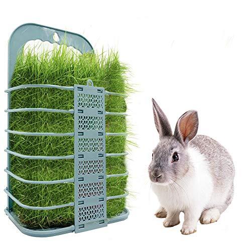iBàste Lapin Hay Feeder Poulet Panier de Légumes Pliable Suspendu Mangeoire à légumes pour Animaux de Compagnie