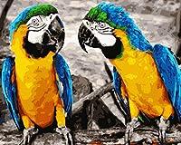 油絵 数字キット 油絵 数字ト ホリデーギフト、誕生日ギフト 40x50センチ フレームレスコンゴウインコ