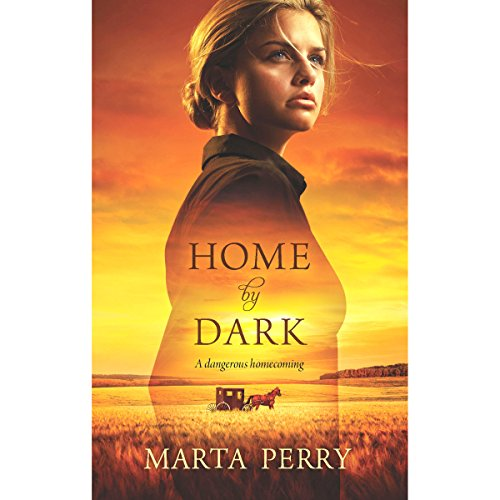 Home by Dark cover art