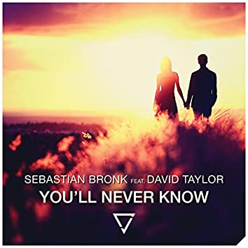 You'll Never Know (feat. David Taylor)