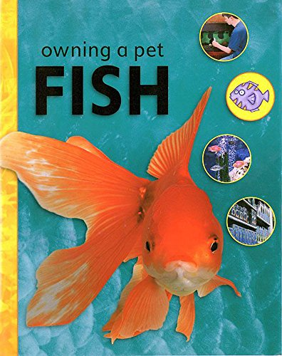 Owning A Pet: Fish