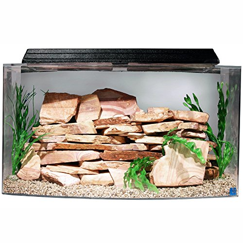 SeaClear 46 gal Bowfront Acrylic Aquarium Combo Set, 36 by 16.5 by 20', Clear