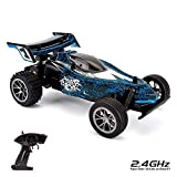CMJ RC Cars 116HSRB Blue Remote Zoom Buggy 1:16 Elektro Ferngesteuertes Auto High Speed Racer 2.4Ghz