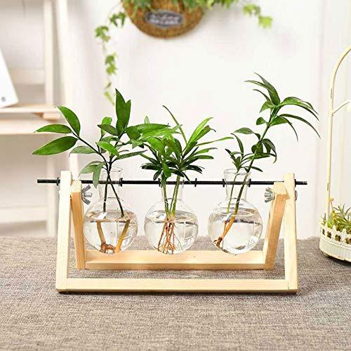 Pianta da Tavolo Terrario Vaso,Supporto in Legno Vintage per Piante idroponiche Vaso da Fiori in Vetro per Decorazione Casa Ufficio Giardino (Retro Wood+3 Vasi)
