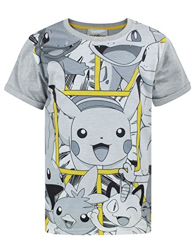 Pokemon Panels Boy's T-Shirt (5-6 Years)