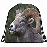Ccsoixu Rocky Mountain Bighorn Sheep Full Curl Animals Wildlife Nature Drawstring Backpack Bag For Kids Boys Girls Teens Birthday, Gift String Bag Gym Cinch Sack For School and Party