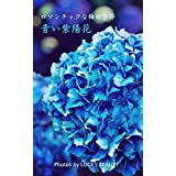 ロマンティックな梅雨季節 青い紫陽花