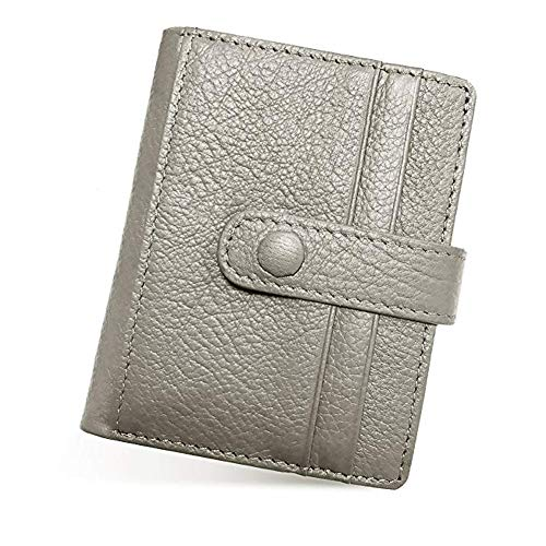 Lecxci Womens RFID Blocking Bifold Slim Leather Front Pocket Compact Wallet Case (Grey)