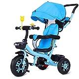 TZZ Bébé Tricycle, Pare-soleil réglable, avec Garde-corps, for les garçons/filles enfant en bas âge, 7 mois - 6 ans (Couleur : B)