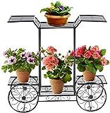 COSTWAY Soporte para Plantas de Metal Eestantería para Flores Estante de...