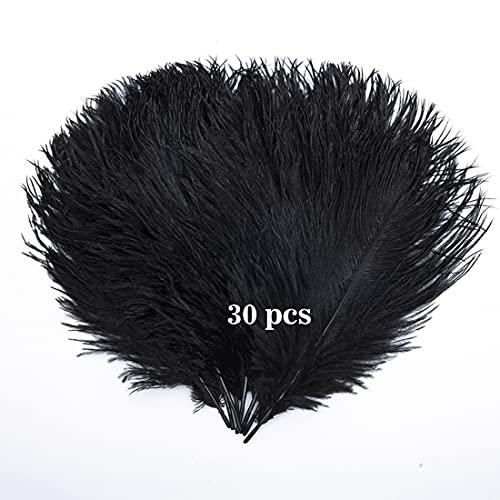 Hollosport 30 plumas de avestruz de 25,4 a 30,4 cm, accesorios de plumas nativas para festivales, bricolaje, fiestas, bodas, atrapasueños, decoración del hogar