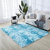 HETOOSHI alfombras mullidas de Interior súper Suaves y mullidas de Terciopelo Linda Alfombra de Dormitorio mullidaAdecuado para salón Dormitorio baño sofá Silla cojín(Azul 80 x 160 cm)