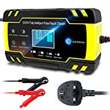 Best Car Battery Chargers - CQWL Car Battery Charger, 12V/24V 8A Intelligent Automatic Review