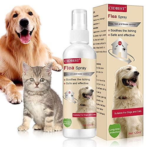 CBROSEY Spray Pulci,Antipulci Spray Cani e Gatti,Flea Spray,Spray per la Protezione delle pulci Spray per Repellente per pulci ingrediente per Cani Gatti Pulci Zecche