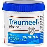 Traumeel T Tabletten Ad Us. Vet. -