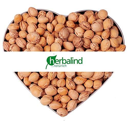 VORRATSPACK 25 kg lose Kirschkerne in Premium-Qualität - Herbalind lose Kirschkerne zur Kissenfüllung für Wärmekissen - schonend gereinigt ohne Chemie